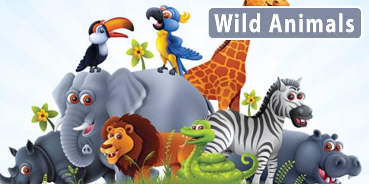 Wild animal wholesale