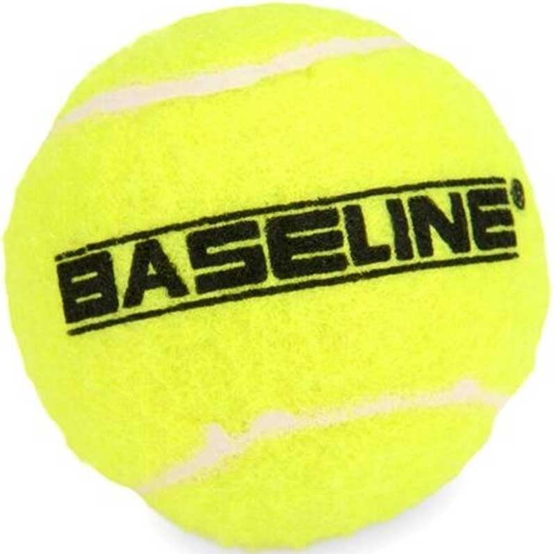 Wholesalers of 48 Pack Tennis Balls toys