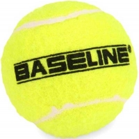 Wholesalers of 48 Pack Tennis Balls toys image