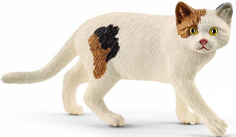 Wholesalers of Schleich American Shorthair Cat toys