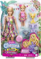 Wholesalers of Barbie Birthday Surprise Barbie & Chelsea Story Set toys image