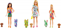 Wholesalers of Barbie Birthday Surprise Sister & Pet Accessories toys image 2