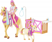 Wholesalers of Barbie Groom N Care Doll | Horses And Playset toys image 3
