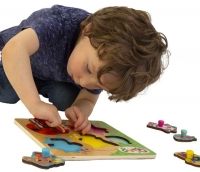 Wholesalers of Bing Wooden Pick And Place Puzzle toys image 2