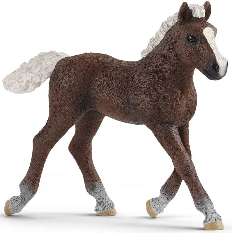 Wholesalers of Schleich Black Forest Foal toys