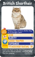Wholesalers of Top Trumps - Cats toys image 3