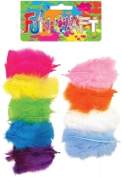 Wholesalers of Craft Kit Feathers Asst toys image