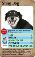 Wholesalers of Top Trumps - Dogs toys image 2