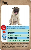 Wholesalers of Top Trumps - Dogs toys image 3