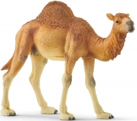 Wholesalers of Schleich Dromedary toys image
