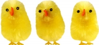 Wholesalers of Easter Chicks Yellow 6cm Pk3 toys image 2