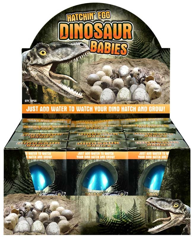 Wholesalers of Egg Growing Dino 4 Cols 6 Asst toys