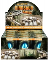 Wholesalers of Egg Growing Dino 4 Cols 6 Asst toys image