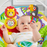 Wholesalers of Fisher-price Infant To Toddler Rocker toys image 3