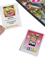 Wholesalers of Game Of Life toys image 3