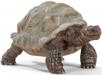 Wholesalers of Schleich Giant Tortoise toys image