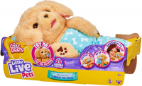 Wholesalers of Little Live Pets Cozy Dozys Charlie The Puppy toys Tmb