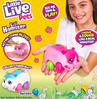 Wholesalers of Little Live Pets Lil Hamster S1 Assortment toys image 4