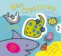Wholesalers of Magic Colour: Sea Creatures toys image