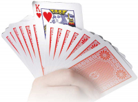 Wholesalers of Mind Blowing Card Tricks toys image 4