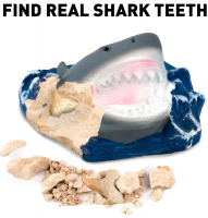 Wholesalers of National Geographic Shark Teeth Dig Kit toys image 4