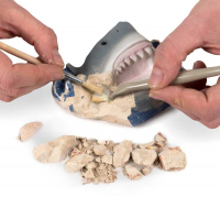 Wholesalers of National Geographic Shark Teeth Dig Kit toys image 6