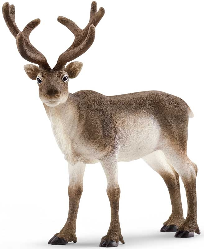 Wholesalers of Schleich Reindeer toys