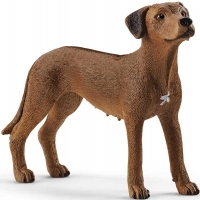 Wholesalers of Schleich Rhodesian Ridgeback toys image