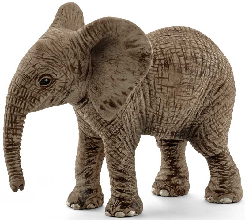 Wholesalers of Schleich African Elephant Calf toys