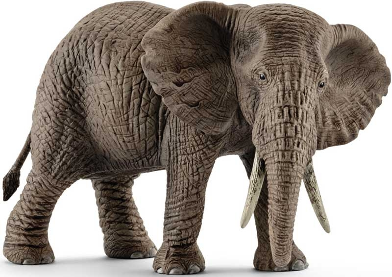 Wholesalers of Schleich African Elephant Female toys