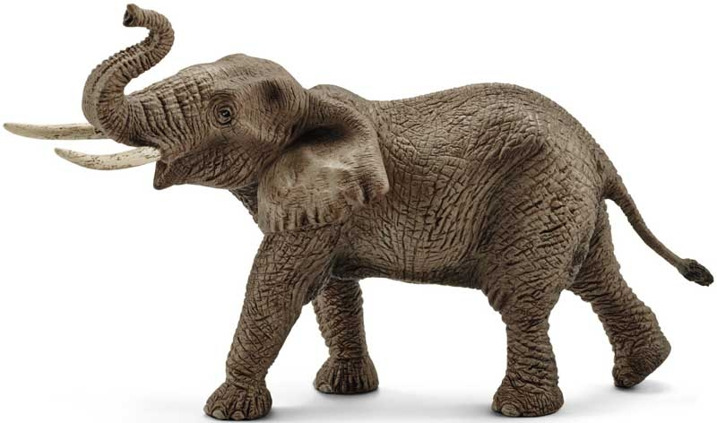 Wholesalers of Schleich African Elephant Male toys