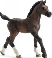 Wholesalers of Schleich Arabian Foal toys image