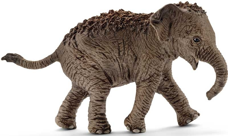 Wholesalers of Schleich Asian Elephant Calf toys