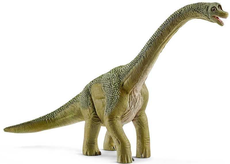 Wholesalers of Schleich Brachiosaurus toys