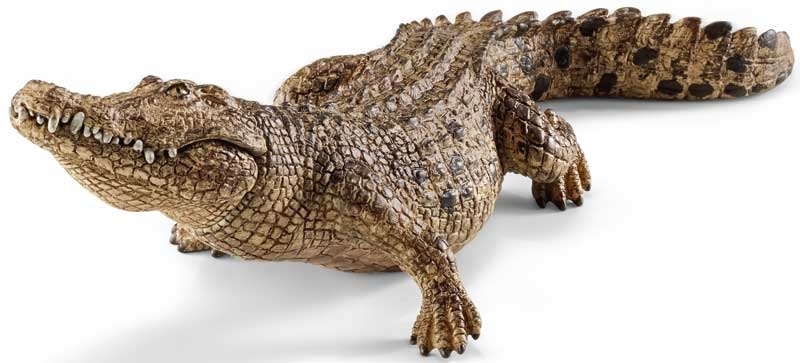 Wholesalers of Schleich Crocodile toys
