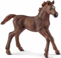 Wholesalers of Schleich English Thoroughbred Foal toys image