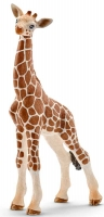 Wholesalers of Schleich Giraffe Calf toys image