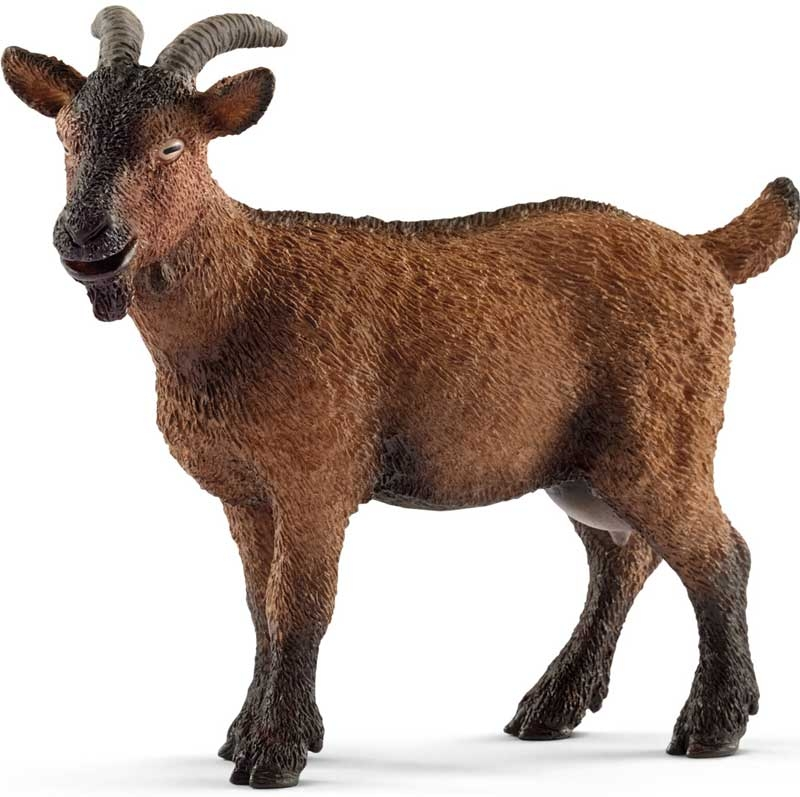 Wholesalers of Schleich Goat toys