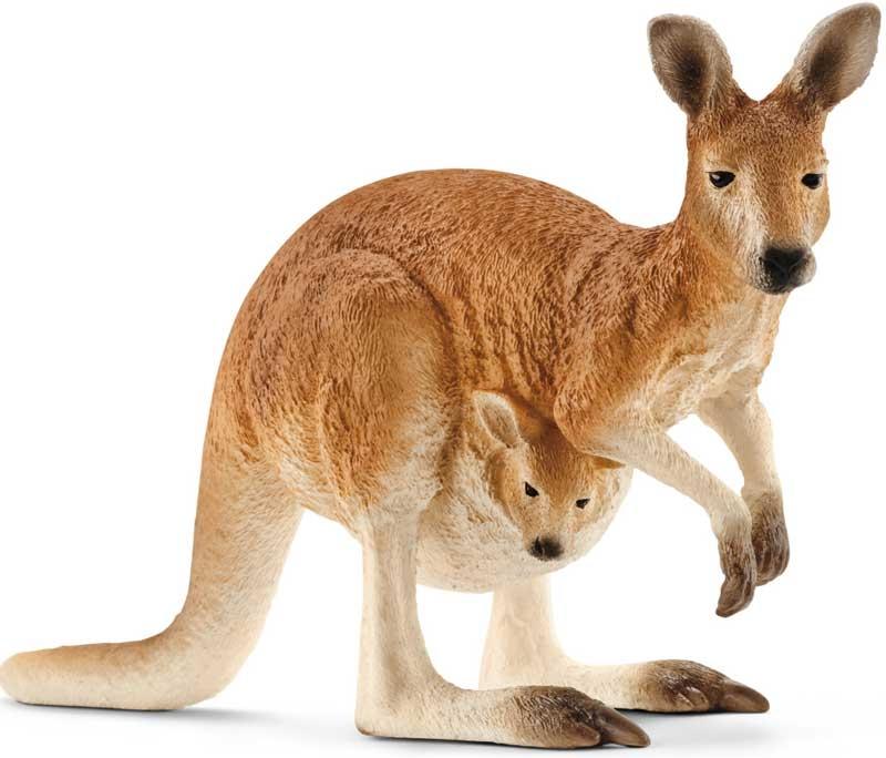 Wholesalers of Schleich Kangaroo toys