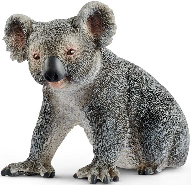 Wholesalers of Schleich Koala Bear toys