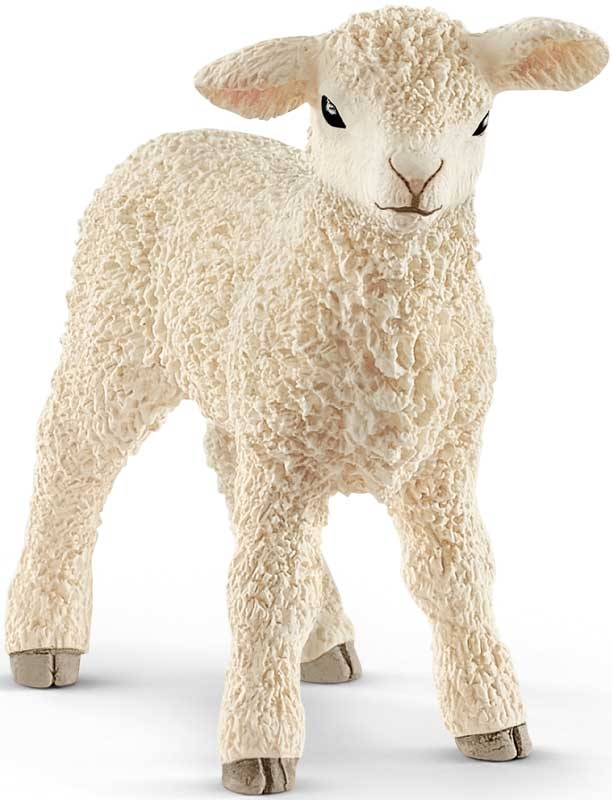 Wholesalers of Schleich Lamb toys