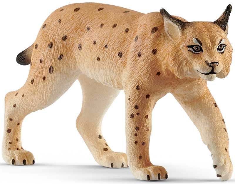 Wholesalers of Schleich Lynx toys