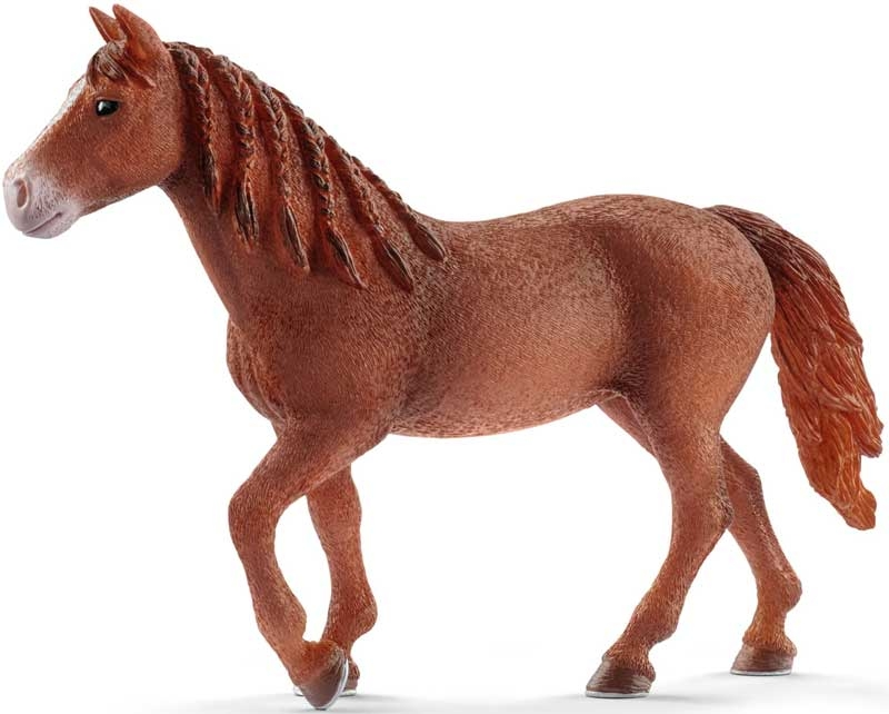 Wholesalers of Schleich Morgan Horse Mare toys