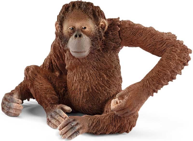 Wholesalers of Schelich Orangutan Female toys