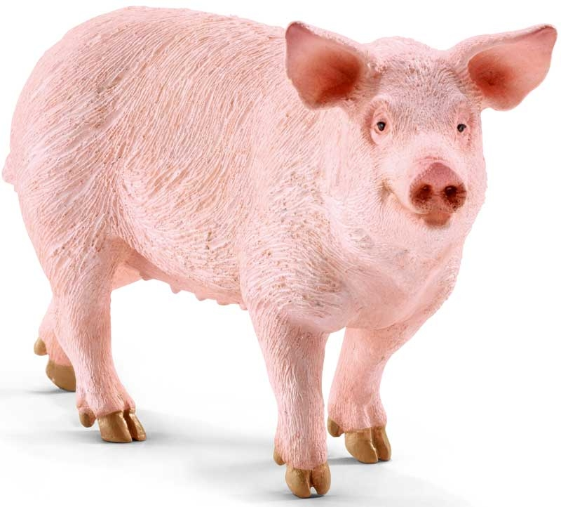 Wholesalers of Schleich Pig toys