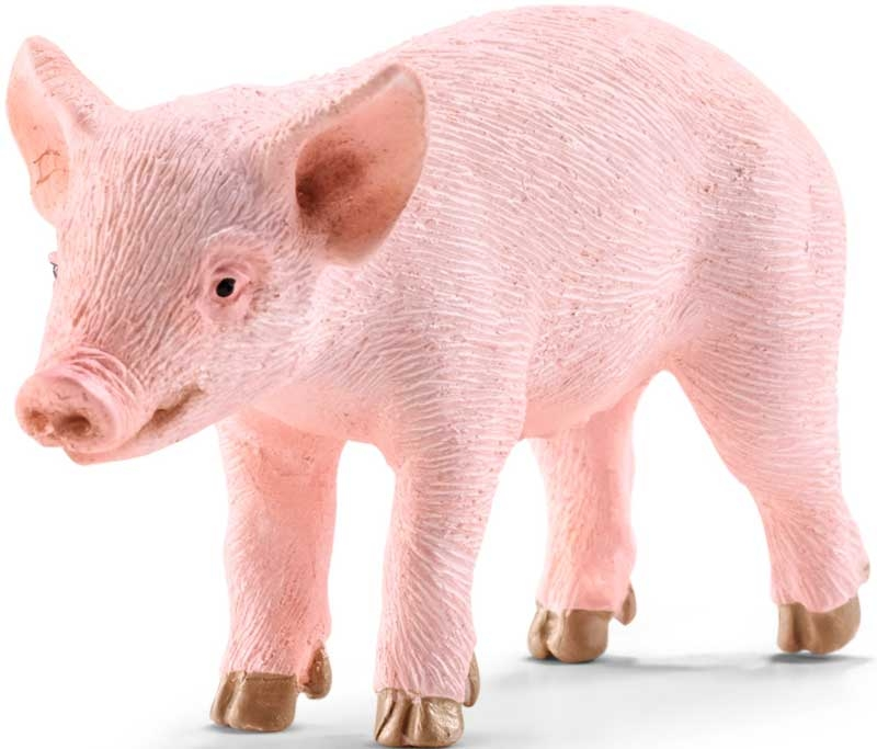 Wholesalers of Schleich Piglet Standing toys