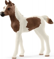 Wholesalers of Schleich Pintabian Foal toys image