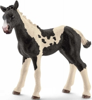 Wholesalers of Schleich Pinto Foal toys image