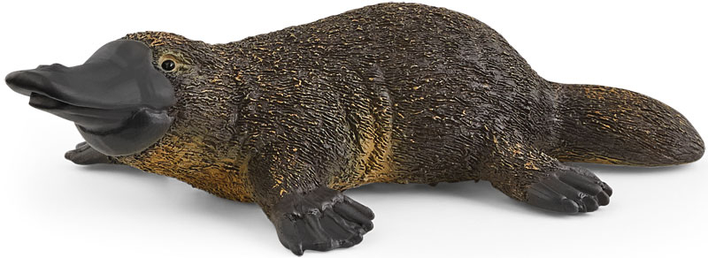 Wholesalers of Schleich Platypus toys