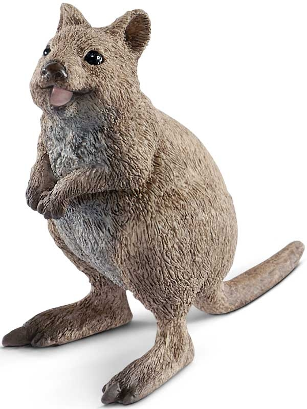 Wholesalers of Schleich Quokka toys